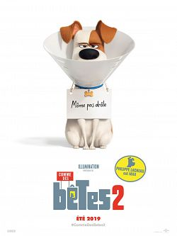Comme des bêtes 2 FRENCH DVDRIP 2019