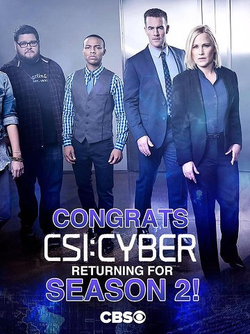 CSI: Cyber S02E18 FINAL FRENCH HDTV