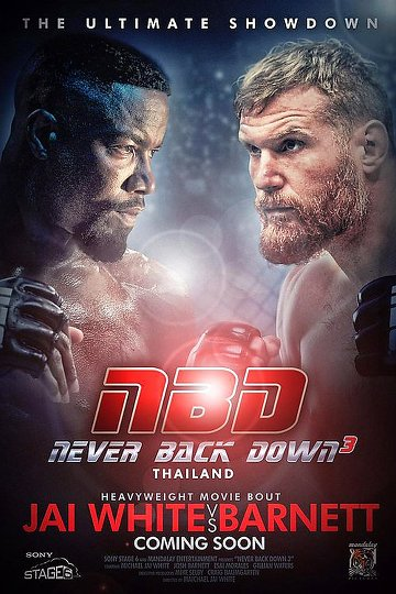 Never Back Down: No Surrender FRENCH DVDRIP 2016