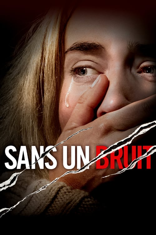 Sans un bruit FRENCH BluRay 720p 2018