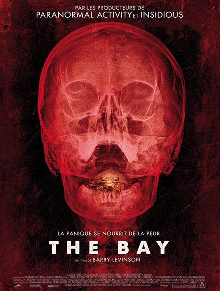 The Bay FRENCH DVDRIP 2013