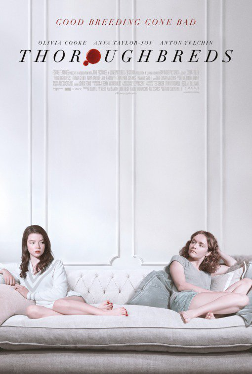 Thoroughbreds FRENCH BluRay 1080p 2018